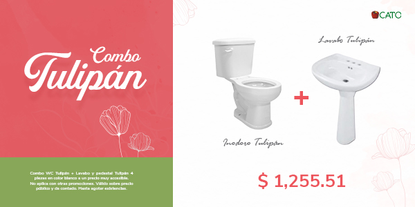 Combo WC y Lavabo