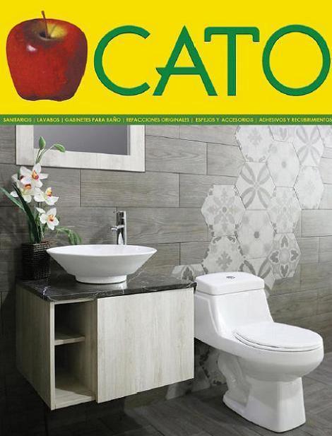 Cato 2017